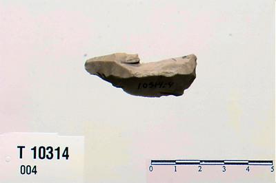 Image from object titled flekkebor