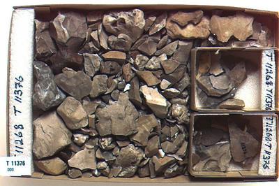 Image from object titled avfald/redskap