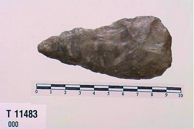 Image from object titled spydspids eller dolkeblad