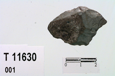 Image from object titled flintskive