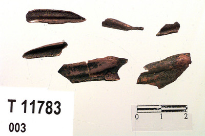 Image from object titled Tannemalje