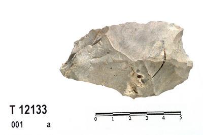 Image from object titled kjerneøks