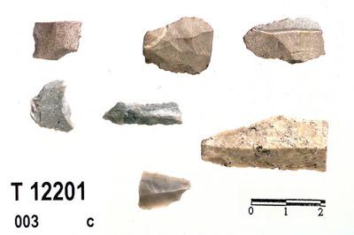 Image from object titled Flekker,skjerver
