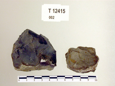 Image from object titled Flintknuter