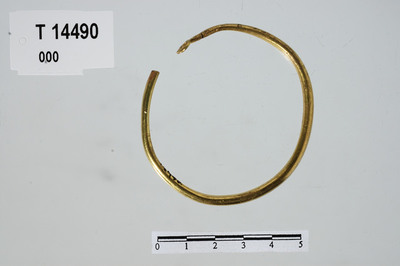 Image from object titled Armring