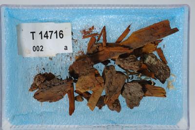 Image from object titled Rester av sverdskjede