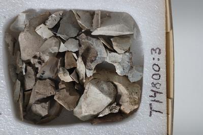 Image from object titled spaltestykker
