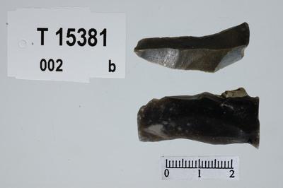 Image from object titled flekkegravstikker
