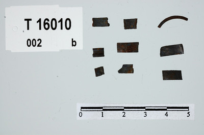 Image from object titled fragmenter/fingerringe