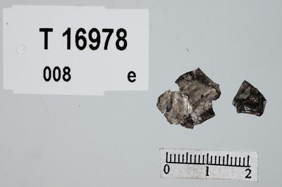 Image from object titled sølvblikkplate