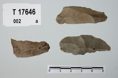 Image from object titled flekker