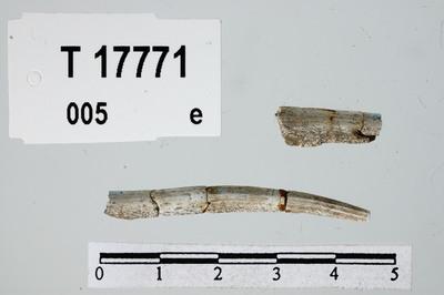 Image from object titled nål/stkr.