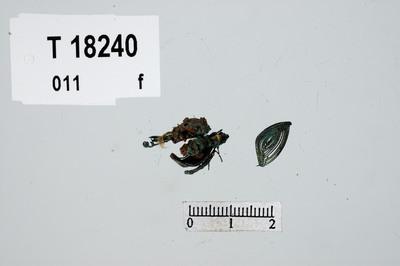 Image from object titled Ukjent