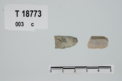 Image from object titled flekkestykker