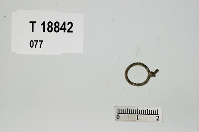 Image from object titled Ring