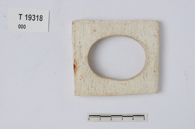 Image from object titled vadbein/Endeplate