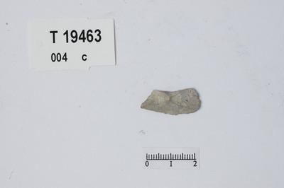 Image from object titled Flekkelignende avslag