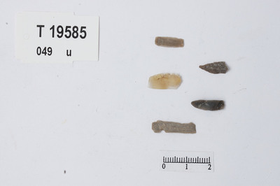 Image from object titled Mikroflekker
