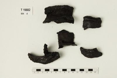Image from object titled bruddstkr./Skjoldbule