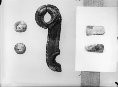 Image from object titled Bardunstrammer
