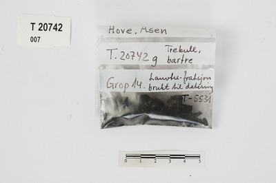 Image from object titled Prøve