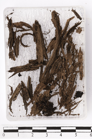 Image from object titled Fragment