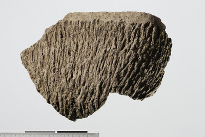 Image from object titled kokekar