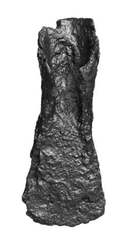 Image from object titled Tværøx (Paalstav)