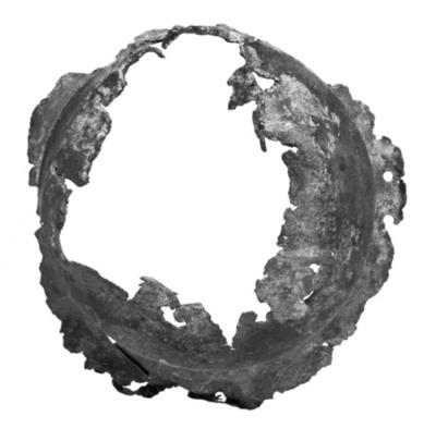 Image from object titled skjoldbukl