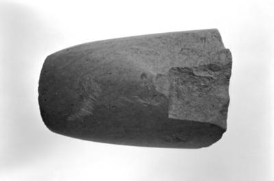 Image from object titled Eggfragment/trinnøks