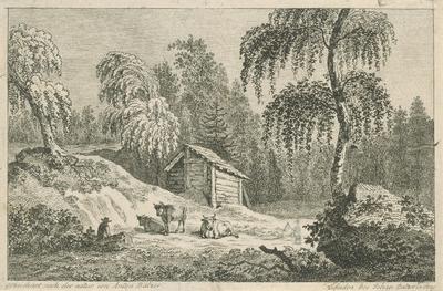 Pastier s kravami
