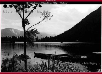 Lac, Champex