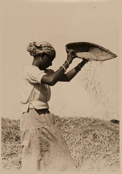 Image from object titled A woman separing chaff | Donna separa la pula