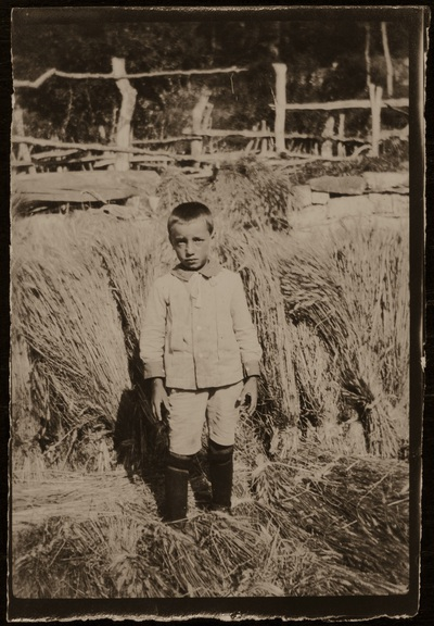 Image from object titled Portrait of a boy near the harvest | Bimbo con il raccolto