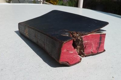 Image from object titled Die Bibel als Rettung vor dem Tod
