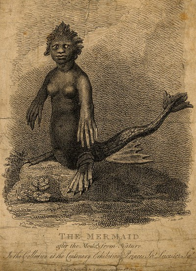 Image from object titled A mermaid, situated on a rock. Etching by J. Godby, 1814, after L. Gahagan.