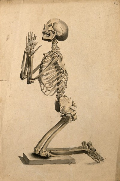 Image from object titled Praying skeleton. Ink and watercolour, 1830/1835?, after W. Cheselden, ca. 1733.