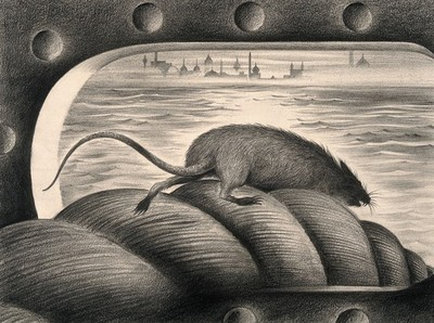 Image from object titled A rat leaving a ship via the mooring rope, thus spreading the plague. Drawing by A.L. Tarter, 194-.