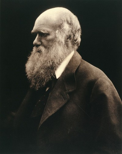 Image from object titled Charles Robert Darwin. Photograph by Julia Margaret Cameron.
