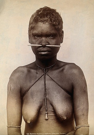 Image from object titled Australia: an aboriginal woman with a bone through her nose. Photograph by Henry King, ca. 1890.