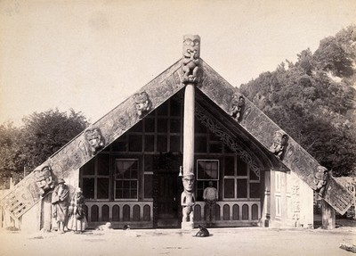 Image from object titled New Zealand: a Maori meeting house. Albumen print.