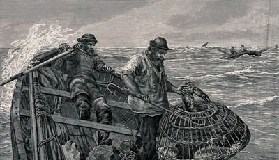 Image from object titled Two fishermen are out in their boat, one is rowing and the other is hawling in the crab basket. Wood engraving by E. Bure after J.C. Hook.
