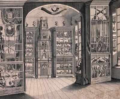 "Image from object titled Richard Greene's museum at Lichfield, the ""Lichfield clock"" standing among cabinets of curiosities. Engraving by Cook."