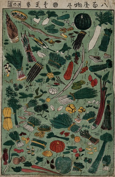 Image from object titled Vegetables available from a grocer are laid out on a green background. Colour woodcut by Shigenobu, 1866.