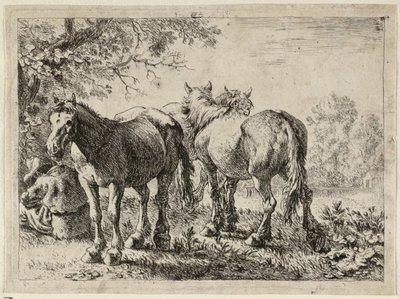 Drie paarden en een boer. <br> Prent uit een achtdelige serie met voorstellingen van verschillende dieren. <br> Ets door Pieter van Laer.; NL-HlmNHA_1477_53009533; Voorhelm Schneevoogt NL-HlmNHA_1477_53009533