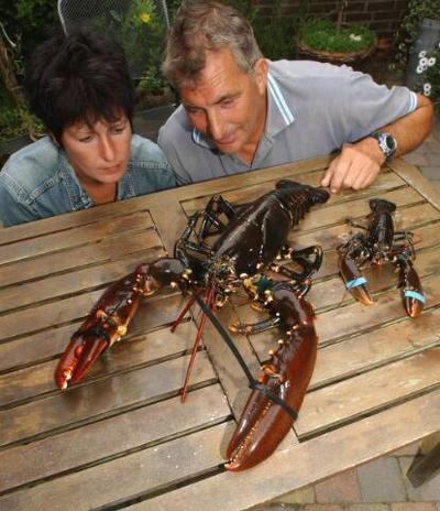 Image from object titled visser Westenbrugge en echtgenote met kreeft