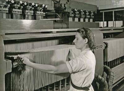 Image from object titled Fotografie   Fabrikation Teigwaren: Automatischer Nudeltrockner