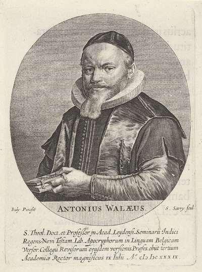 Portret van Anthony de Wale (Antonius Walaeus), hoogleraar in de theologie te Leiden