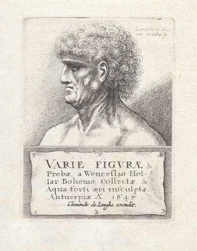 Mannenkop met krullend haar, en profil; Karikaturen, koppen en misvormingen naar Leonardo da Vinci; Varie figurae et probae