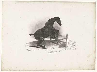 Paard springt over een hek; Cheval franchissant une barrière
